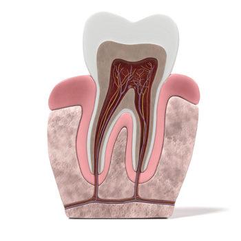 dental_kosmetologia_7